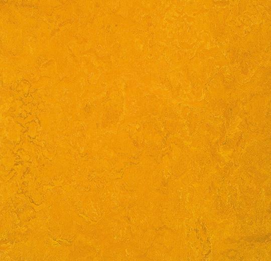 prírodné linoleum Golden sunset