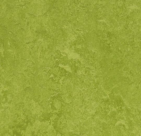prírodné linoleum Green