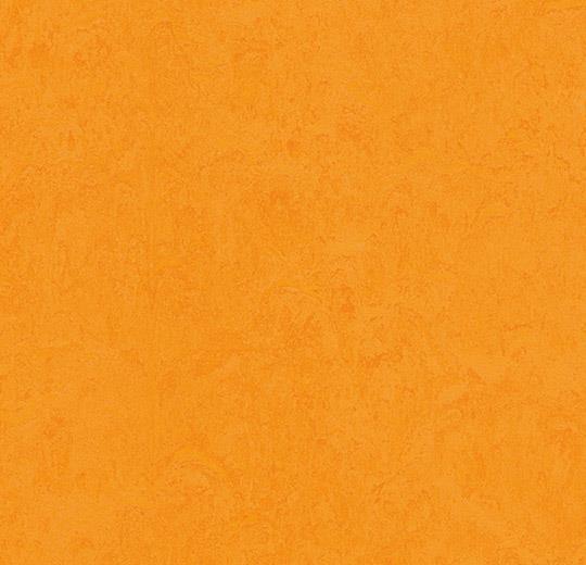prírodné linoleum Marigold