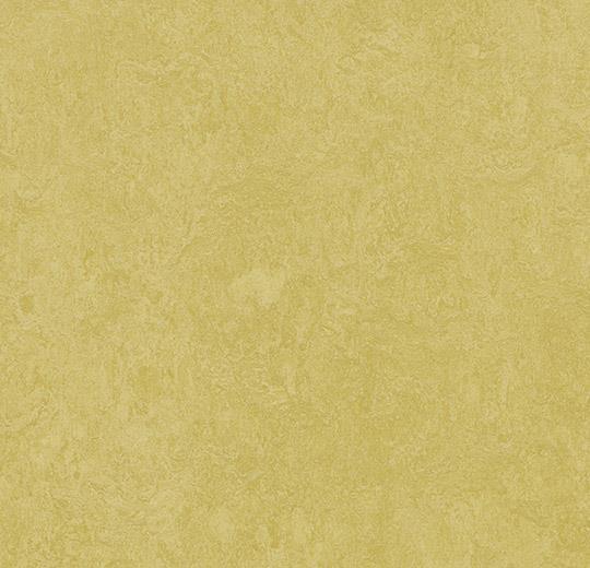 prírodné linoleum Mustard